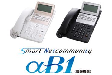 NTT  αB1