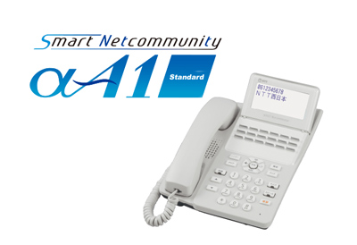 NTT αA1